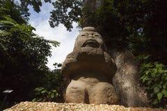 Olmec tabasco, Villahermosa, Mexico, arkeologi, turism Arkivbild
