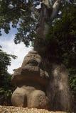 Olmec tabasco, Villahermosa, Mexico, arkeologi, turism Royaltyfri Fotografi