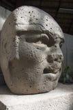 Olmec un'archeologia di Venta Villahermosa Tabasco Messico della La della cultura Fotografie Stock