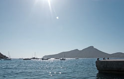 Olmo Mallorca de Sant Fotografia de Stock Royalty Free
