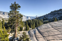 Olmsted Point, Yosemite National Park Royalty Free Stock Photography