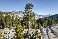 Olmsted-Punkt, Yosemite Nationalpark Lizenzfreie Stockfotos