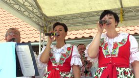 Olomouc, Δημοκρατία της Τσεχίας, στις 30 Ιουλίου 2017: Παραδοσιακό ιστορικό σλοβάκικο λαϊκό κοστούμι στη Μοραβία Uhersky Brod, ζώ απόθεμα βίντεο
