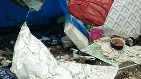 OLOMOUC, REPUBBLICA CECA, IL 2 GENNAIO 2019: Uomo di costruzione della gente della tana delle tende degli strati del ghetto del c archivi video