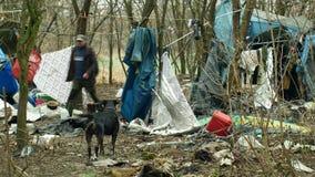 OLOMOUC, TSJECHISCHE REPUBLIEK, 2 JANUARI, 2019: Tent van het bladen de dakloze getto en het chalet van de hond houten plastic fo stock foto