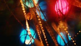 Olor del abeto de la Navidad almacen de video