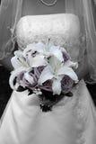 Olor púrpura Imagen de archivo libre de regalías