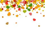 Olorful μειωμένα φύλλα Ð ¡ Φύλλα σφενδάμου που απομονώνονται στο άσπρο backgro ελεύθερη απεικόνιση δικαιώματος