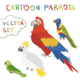 Olorful cute parrot birds with white background Royalty Free Stock Images
