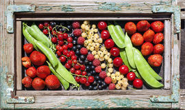 Colorful fruits picture in frame Stock Photos