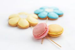 Olorful macaroon Ð ¡ με τα μπισκότα στη μορφή του λουλουδιού στο πιάτο Στοκ εικόνα με δικαίωμα ελεύθερης χρήσης