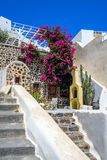 Olorful quiet backyard with beautiful flowers and classic traditional architecture in Santorini Stock Photography