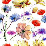 Olorful summer seamless pattern Stock Images