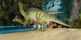 Olorotitan. The Olorotitan was a duckbilled dinosaur from the Late Cretaceous and was found in Russia Stock Photo