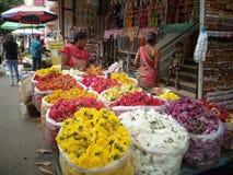 Olour 15 di fotografia di Stree in India immagine stock