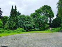 Olsberg绿色公园 免版税库存照片