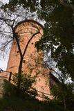 Olsztyn Schloss Stockfotos