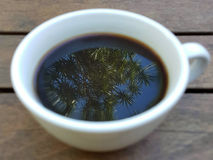 Oltre caffè Fotografia Stock Libera da Diritti