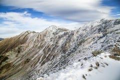 Oltre la neve Fotografia Stock