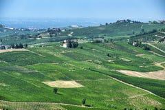 Oltrepo Pavese Италия, сельский ландшафт на лете стоковая фотография rf