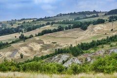 Oltrepo Pavese Италия, сельский ландшафт на лете стоковое фото rf