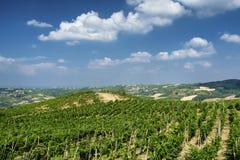 Oltrepo Pavese Италия, сельский ландшафт на лете стоковая фотография