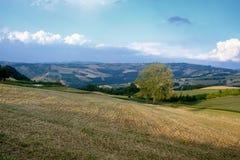 Oltrepo Pavese Италия, сельский ландшафт на лете стоковое изображение rf