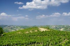 Oltrepo Pavese Италия, сельский ландшафт на лете стоковые изображения rf