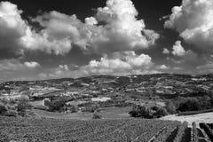 Oltrepo Pavese Italia, paesaggio rurale ad estate immagini stock libere da diritti