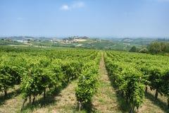 Oltrepo Pavese Italie, paysage rural à l'été image libre de droits