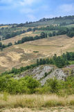 Oltrepo Pavese Italy, rural landscape at summer Royalty Free Stock Image