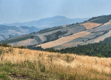 Oltrepo Pavese Italy, rural landscape at summer Stock Photography
