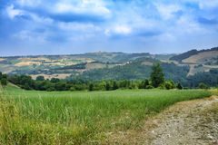 Oltrepo Pavese Italy, rural landscape at summer Stock Photo