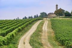 Oltrepo Piacentino意大利,农村风景在夏天 免版税库存照片