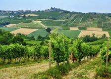 Oltrepo Piacentino Italia, paisaje rural en el verano Imagenes de archivo