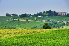 Oltrepo Piacentino Włochy, wiejski krajobraz przy latem Obrazy Stock