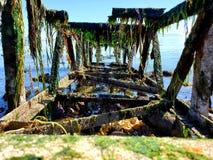 Olvidado en el mar en el wa de Bellingham imagen de archivo libre de regalías