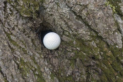 Olyckligt golfskott Royaltyfri Bild