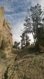 Olycksbringare för pilbågedalbanff berg Arkivfoto
