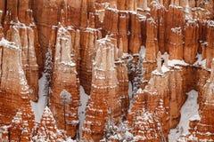 Olycksbringare och sörjer träd som täckas i snö, Bryce Canyon, Utah Royaltyfri Foto