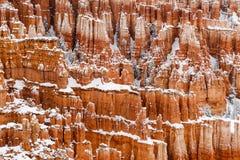 Olycksbringare och träd på klippan som täckas i snö, Bryce Canyon, Utah Royaltyfri Foto