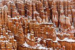Olycksbringare och träd på klippan som täckas i snö, Bryce Canyon, Utah Arkivfoto