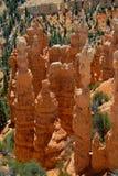 Olycksbringarestigning som är högväxt i Bryce Canyon Royaltyfria Bilder