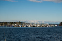 Olympia Marina. Marina in Olympia Washington with the Olympic mountains in the back ground Stock Images