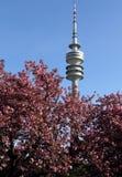 Olympia Park, München, Beieren, Duitsland, Olympiapark Royalty-vrije Stock Foto's