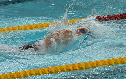 Olympian and World Youth gold medalist Peter Bernek. Hong Kong, China - Oct 29, 2016. Olympian and World Youth gold medalist Peter Bernek from Hungary swimming Royalty Free Stock Photos