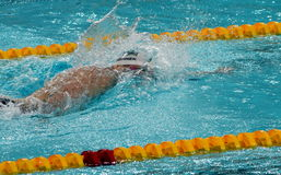 Olympian and World Youth gold medalist Peter Bernek. Hong Kong, China - Oct 29, 2016. Olympian and World Youth gold medalist Peter Bernek from Hungary swimming Stock Photo
