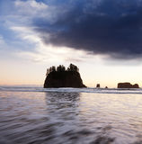 Olympic coast Royalty Free Stock Images