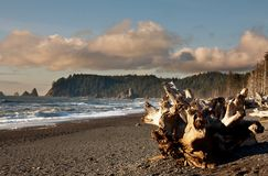 Olympic coast Royalty Free Stock Photography