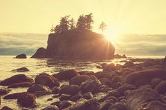 Olympic coast Stock Photography